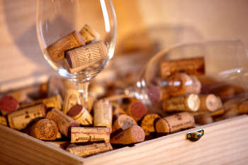 Fine Food and Wine Week