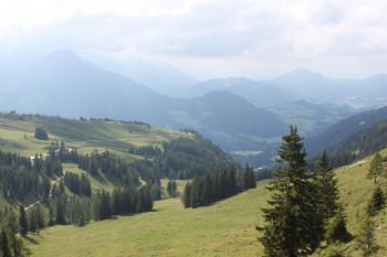 Zwieselalm
