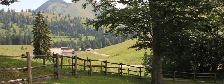 Berghotel Sudelfeld Ausblick