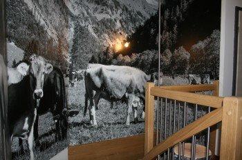 Allgäuer Kühe im Treppenhaus