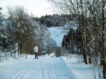 Genießen Sie die Winterlandschaft bei ausgedehnten Wanderungen auf dem Winterwanderwegen oder auch im gut gespurten Loipennetz