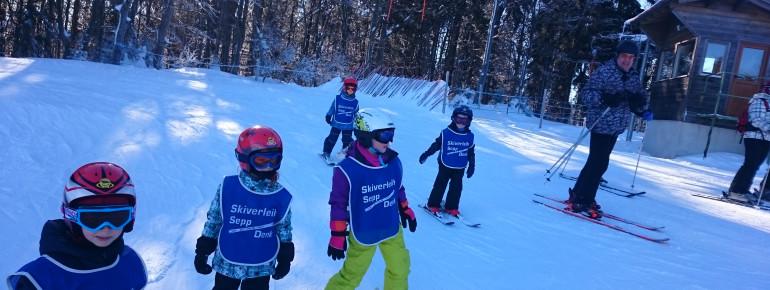 Skischule Mitterdorf