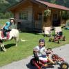Go-karts & Ponys & Fahrräder
