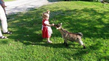 Tiere zum Anfassen!