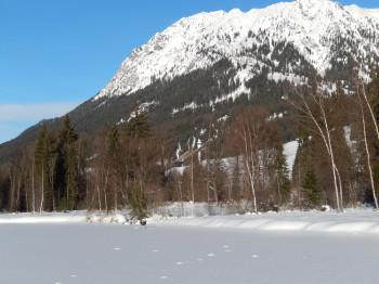 wer sieht die Skisprungschanzen?
