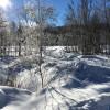 Winter in Bayerisch Eisenstein