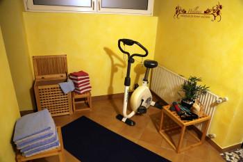 Haus Scheiblauer - Wellness