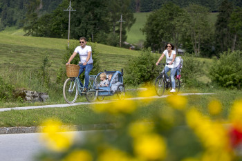 im Sommer gratis Fahrradverleih, wir haben auch E-Bikes und eine Vespa zu vermieten