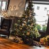 Eingang / Weihnachtsbaum