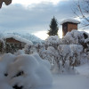 Garten der Ferienhäuser Bergidyll