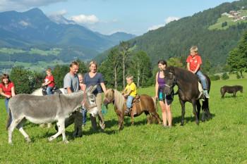 Ponyreiten nur im Sommer von Montag bis Freitag