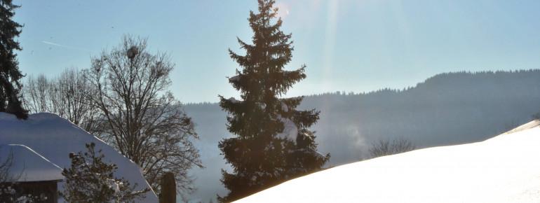 Blick ins Tal Todtnauberg
