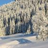 Traumhafte Winterlandschaft!