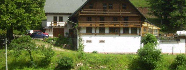 Fereinwohnung Dreherhof in Schönwald im Schwarzwald
