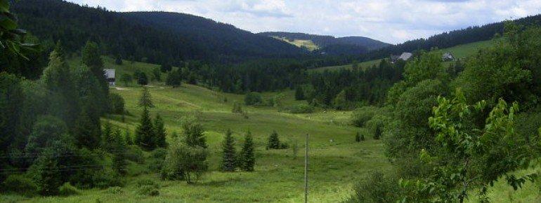 Sport Ferienwohnung Dreherhof in Schönwald im Schwarzwald