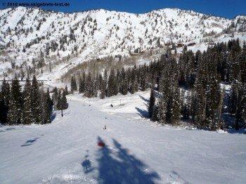"Easy terrain at the ""Sunnyside"""
