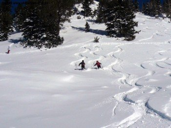 """powder in the """"Catherine`s Area"""""""
