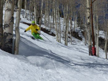 Tree-Skiing in Aspen Mountain