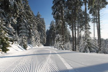 Perfectly groomed slopes wait to be discovered in the Braunlage Wurmberg ski area.
