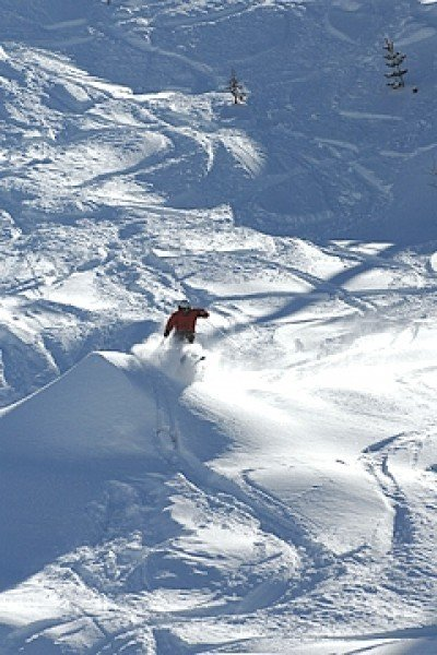 ski resort dodge ridge ski holiday reviews skiing. Cars Review. Best American Auto & Cars Review