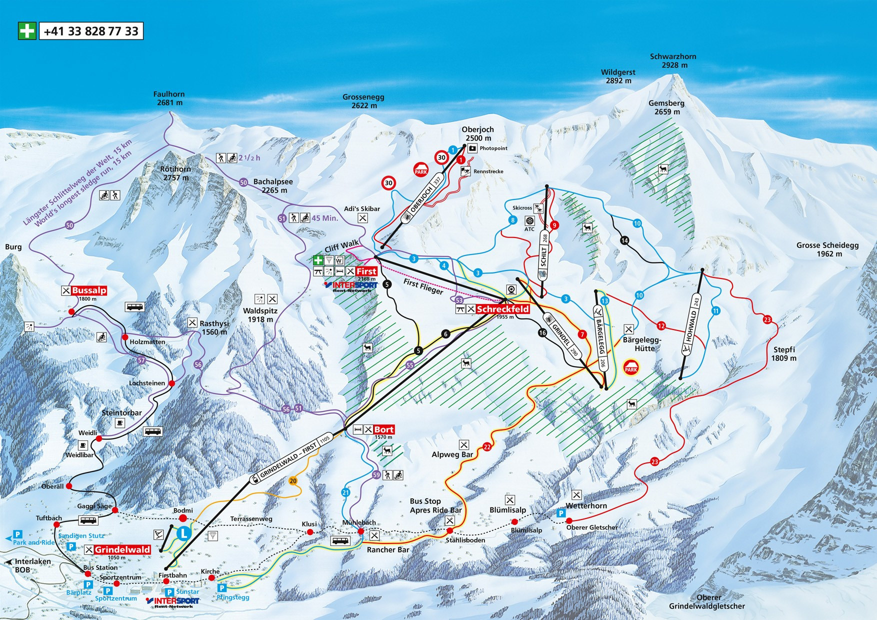 Grindelwald First Trail Map • Piste Map • Panoramic Mountain Map