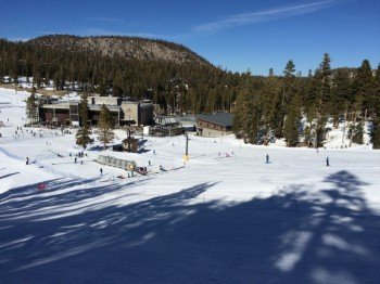 View of the beginners area at Festival Poma Lift near Canyon Lodge.