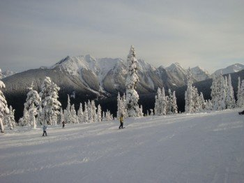 Experts can ski the backcountry as well.
