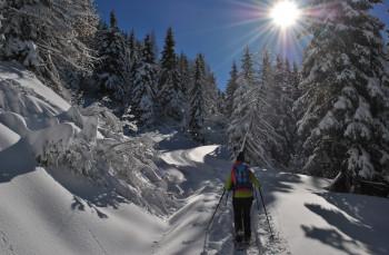 Snowshoe hiking in Nassfeld-Pressegger See