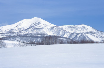 Niseko United consists of four connected ski areas.