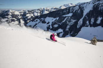 A skier carving in the Ski Juwel Alpbachtal Wildschönau
