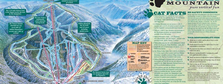 Trail Map Wildcat Mountain Ski Resort