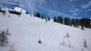Fast das komplette Skigebiet befindet sich unterhalb der Baumgrenze: Das Freeride-Vergnügen ist also etwas eingeschränkt!
