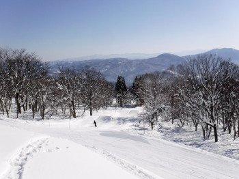 Durchschnittlich 4 Meter Schnee liegen im Winter im Skigebiet.