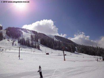 Die sehr einfachen Abfahrten am Molly Hogan Lift sind auch für ungeübte Skifahrer geeignet.