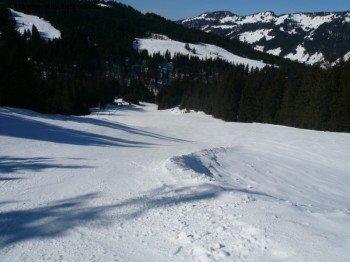 Die längst Abfahrt im Skigebiet ist die Familienabfahrt Nr. 5. Sie führt von der Bergstation der Schelpenbahn auf einer durchgängig blau markierten Piste zurück ins Tal.