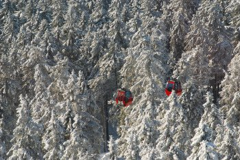 Die Wurmbergseilbahn im Winterwald