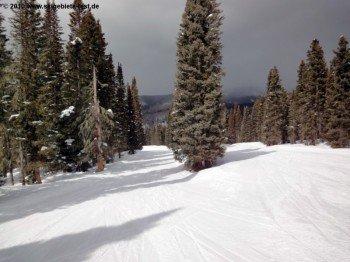 Durango Mountain Resort bietet viele einfache Waldabfahrten und ist somit eines der familienfreundlichsten Gebiete Colorados.