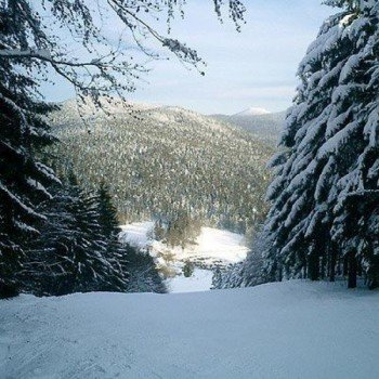 Schneereichster Monat im Skigebiet Eck ist der Januar
