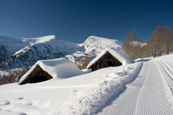 Winterimprssion von der Höhen-Loipe am Falkert!