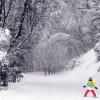 Kids lernen in der Skischule das ABC des Wintersports.