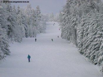 Der Geißkopf gehört zu den 10 bestbewerteteb Skigebieten in Deutschland