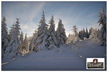Der Januar ist der schneereichste Monat im Skigebiet Geißkopf