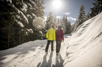 Durch herrlichen Winterwald führen die präparierten Winterwanderwege.