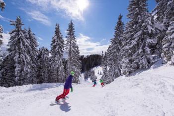 Golte liegt am 1.573 m hohen Medvedjak.