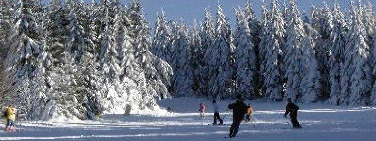 Fünf unterschiedliche Pisten bietet das Skigebiet Hahnenklee Bocksberg in Niedersachsen