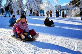 Eine Fahrt mit dem Bocksbergbob ist eine gelungene Abwechslung zum Skifahren