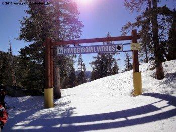 Eingang zu den Powderbowl Woods! Dahinter verbergen sich einige schöne Waldabfahrten.