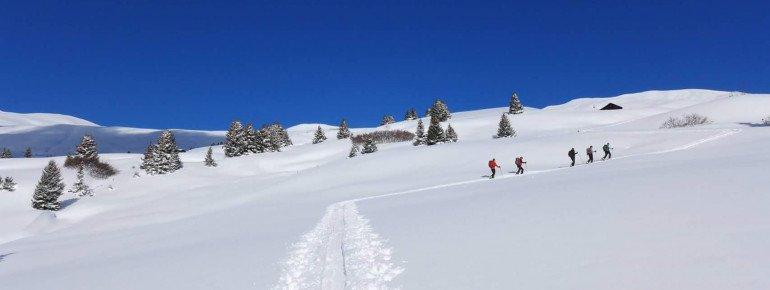 Schneeschuhtouren: Natur pur