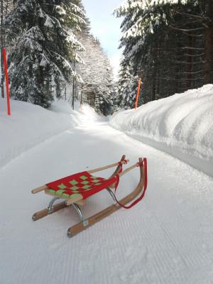 Die Schlittelbahn Kerenzerberg gehört zu den längsten der Ostschweiz.