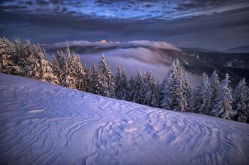 Die verschneite Winterlandschaft kann bei Spaziergängen oder Schneeschuhwanderungen erkundet werden.